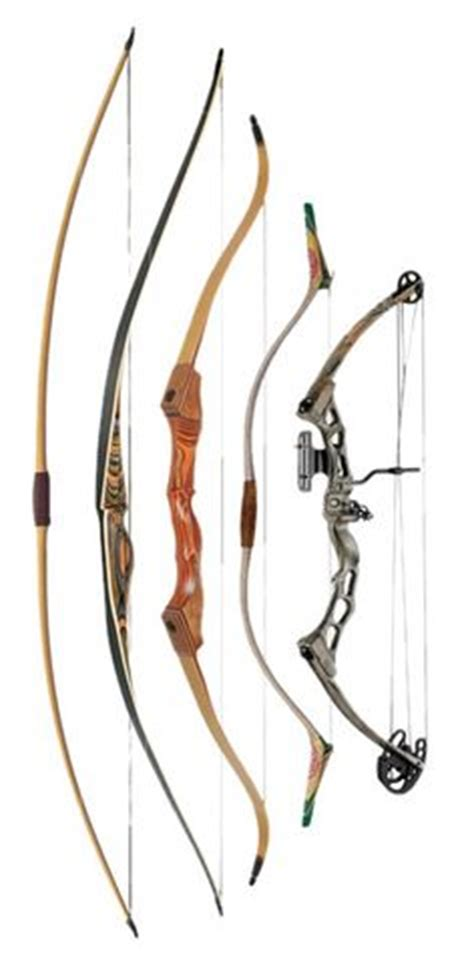 Write an essay about my school compound bow
